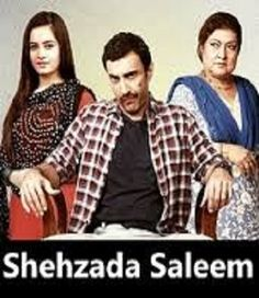 Shehzada Saleem Episode 70 on Ary Digital 16th May 2016