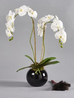 For monochrome style look no further than the Frankley II, a stunning contemporary display of white phalaenopsis orchids beautifuly arranged in a black glass globe vase. Perfect display for  small or insipid spaces, this lifelike Demmery's design brings a touch of  elegance to any room it enters. Faux Flower Arrangements, Artificial Silk Flowers, Spider Plants, Phalaenopsis Orchid, Monochrome Fashion, White Orchids, Glass Globe, Faux Flowers, Black Glass