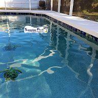 Superior Pools Tile & Mosaics
