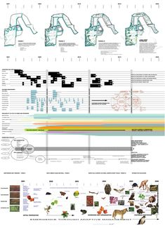 James Corner Field Operations & Nina-Marie Lister (1999): Emergence through Adaptive Management. Downsview Park, Toronto (CA), via placesjournal.org