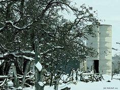 Silo in Oak, City winter  December  2015