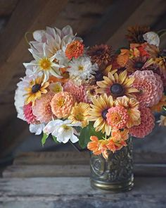 Question: What are your favorite varieties of zinnias for using in wedding work? How do you condition them before using them in bouquets, centerpieces, etc. Zinnias, Daffodils, Fresh Flowers, Beautiful Flowers, Beautiful Bouquets, Chocolate Cosmos, Ivy House, Flower Farm, Plants