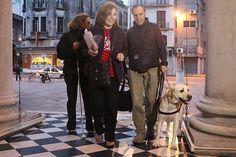 """Más de 450 personas ciegas y con baja visión disfrutaron de """"El Misántropo"""" de Molière en el Solís"""