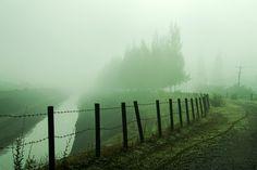 It's a foggy day:) by DEW SP, via 500px