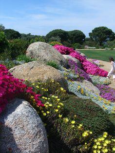 Parc de Saleccia en Corse