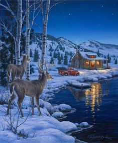 At Waters Edge — Darrell Bush Art – Winterbilder Christmas Scenes, Christmas Art, Winter Christmas, Country Christmas, Christmas Greetings, Wildlife Paintings, Wildlife Art, Winter Pictures, Christmas Pictures
