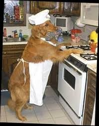 Image result for homemade food for dogs with liver disease