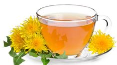 If you are pregnant, then dandelion tea is one of the best things you can drink. Dandelion tea in pregnancy does wonders for the baby as well as the mother. Green Tea Drinks, Types Of Tea, Fresh Fruits And Vegetables, Proper Diet, Lose Belly Fat, How To Lose Weight Fast, Healthy Life, Dandelion, Healthy Recipes