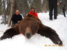 Big bear. Alaska - OUTDOORSMAN.com I must admit I would be scared the whole time! talk about adrenaline pumping