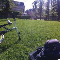Lækkert vejr i kongens have i søndags  #lækkert #chill #aggies #usu