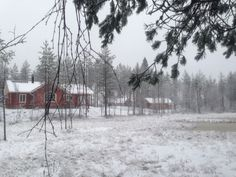 #holidayhouse #loghouse #cottage #finland The Real World, Log Homes, Finland, The Dreamers, Storytelling, Cottage, Nature, Travel, Outdoor