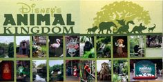 Animal Kingdom Layout