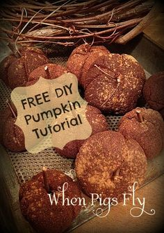Cinnamon Apple Pumpkins tutorial.