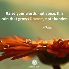 ...it is the rain that grows flowers, not thunder. Rumo
