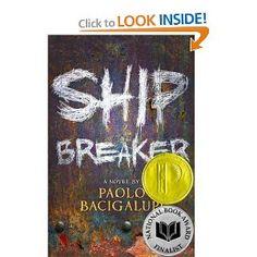 Ship Breaker.