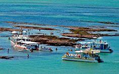 Ⓒ Flat da Taci Paraiba, Brazil, Places, Flat, Places To Visit, Tourism, Traveling, Flat Shoes, Lugares