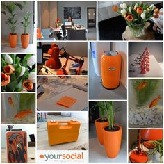 We just love orange @ the office in Breda :-)