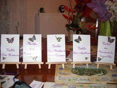 Mariage à thème:les papillons