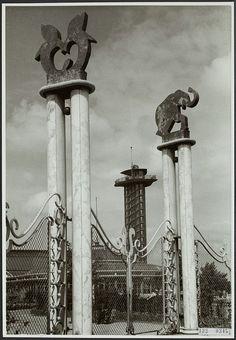 De in 1972 gesloopte 47 meter hoge uitkijktoren was één van de belangrijkste attracties van de Diergaarde Blijdorp. De uitkijktoren en de Diergaarde werden ontworpen door architect Sybold van Ravesteyn. Ontwerp Diergaarde Blijdorp In 1938 kreeg Sybold van Ravesteyn de opdracht voor het ontwerp van een nieuwe dierentuin in de uitbreidingswijk Blijdorp. Op last van Rotterdam, Zoo Architecture, Zoo Photos, Church Building, Netherlands, Holland, Dutch, Castle, Around The Worlds