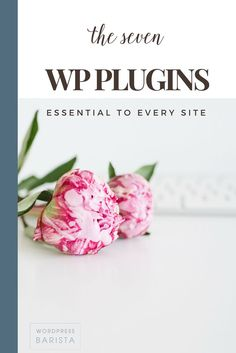 Security, social media, e-commerce, anti-spam and more - all the plugins you need and none you don't! | Wordpress Tips | Blogging Tips| Tips for Bloggers | WordPress Plug Ins | Starting to Blog