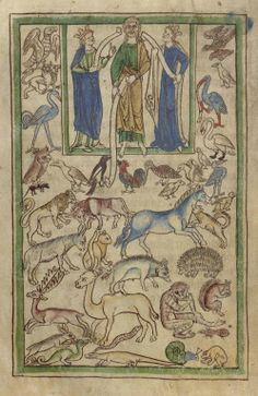 Adam Naming the Animals - detail of illustration - about 1250 - 1260 - Getty Museum