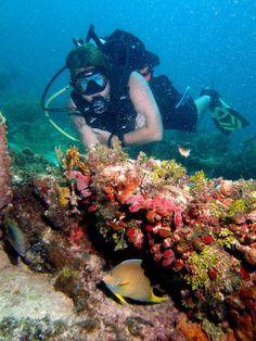 Scuba Instructor Paul Bilisko and a Queen Angelfish off the coast of Islamorada, Florida. Brian Sevald Photography