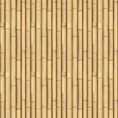 bamboo textures seamless - 41 textures