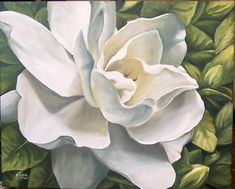 Google Image Result for http://images.fineartamerica.com/images-medium-large/1-gardenia-natalia-tejera.jpg