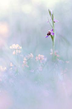 Breathe ...