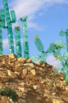 An Artist's Visionary Plastic Bottle Sculptures Offer A New Perspective On Garbage