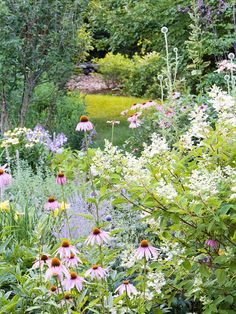 Its wildlife-pleasing composition shines through in the combination of perennials, shrubs, and trees that supply sustenance and structure through the year. Nearly everything in residence serves someone's appetite. A vast roster including coneflower, Russian sage, sedum, salvia, Agastache, phlox, and hydrangea were also chosen for pollinator potential.