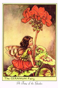 "Cicely Barker's Fairy Print - ""THE GERANIUM FAIRY"" - LARGE Children's Lithogrpah - c1955"