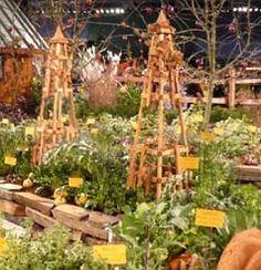 5 basic steps for starting your own vegetable garden.