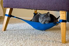 The CatCrib Is Like A Hammock For Your Kitty. Cute!