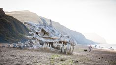 Did a massive dragon just wash ashore along England's Jurassic coast?
