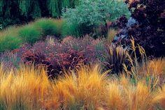 Designing with Ornamental Grasses | Louisiana Gard