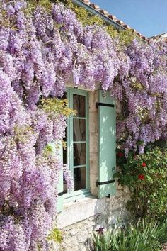 Wisteria, how that must scent the air when the windows are open! love the scent of wisteria French Windows, French Chateau, Dream Garden, Garden Inspiration, Beautiful Gardens, Outdoor Gardens, Planting Flowers, Outdoor Living, Beautiful Places