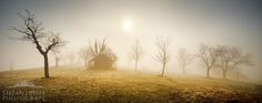 Fairy tale Landscape - This morning we had some persistent fog. Good conditions to grab my cam and go out for a foggy-shooting. I was overwhelmed by the mystic light surrounded me...