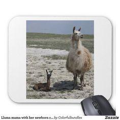 Llama mama with her newborn cria mouse pad