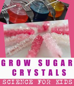 Grow sugar crystals to make rock candy. Easy edible science for kids! Science Crafts, Food Science, Science Experiments Kids, Science For Kids, Science Activities, Slumber Party Games, Carnival Birthday Parties, Make Rock Candy, Chemistry For Kids
