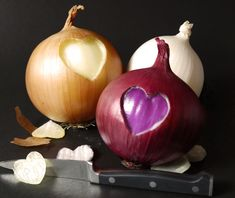 One of our all-time favorite photos, because Onion Country, USA is truly where our heart is! Vegetable Recipes, Farming, True Love, Onion, All About Time, Appetizers, Vegetables, Country, Usa
