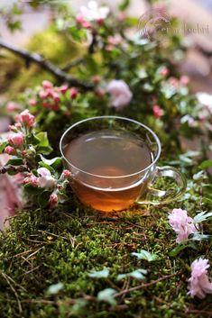 Food Art, Herbalism, Alcoholic Drinks, Beauty Hacks, Herbs, Health, Glass, Cozy, Herbal Medicine