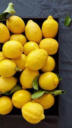 Yellow! Lemons, garnish, fruit, citrus, tablescape, plant, table settings, staging