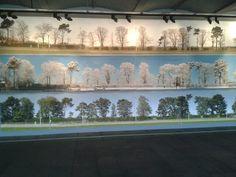 25 trees at Salts Mill Saltaire David Hockney, Salts, Trees, Colours, Salt, Home Decor Trees, Wood, Plant