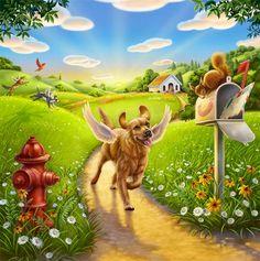 Doggy Heaven   Dog Heaven