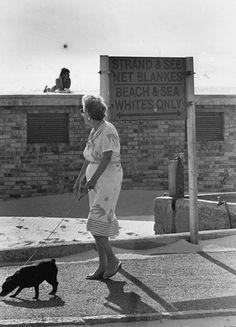 apartheid signs