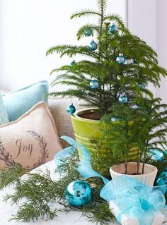 Norfolk Island pines in ceramic pots make a pretty focal point when dressed with sparkly ornaments.  More ideas for Christmas decorating with natural materials: http://www.midwestliving.com/homes/seasonal-decorating/nature-inspired-christmas-decorations/?page=13
