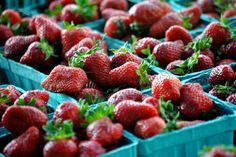 East Goshen Farmers Market - every Thursday afternoon in the park