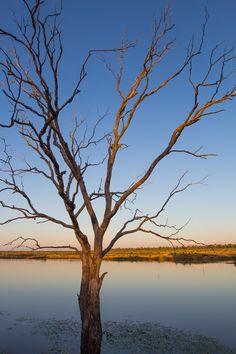 Beautiful scenery in Outback Queensland, Australia