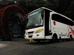 Sewa Bus Jogja: Sewa Bus Jogja 37